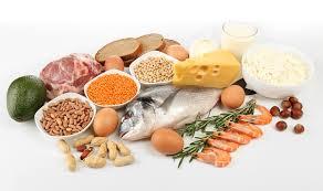 Protéines  | Proteins