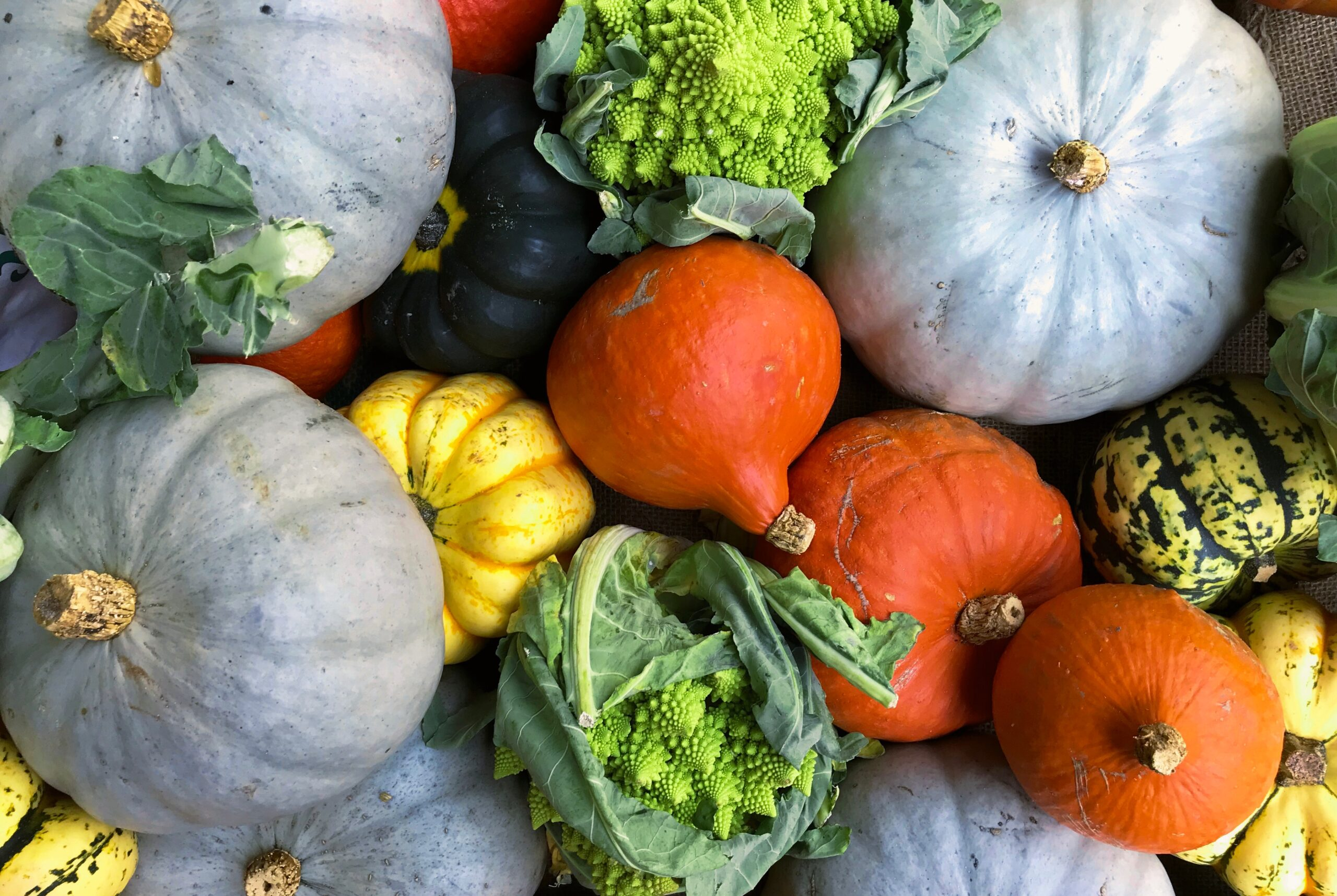 Seasonal fruits and vegetables – Fall | Fruits et légumes de saison – Automne